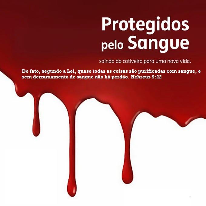 ProtegidoPeloSangueWEB4