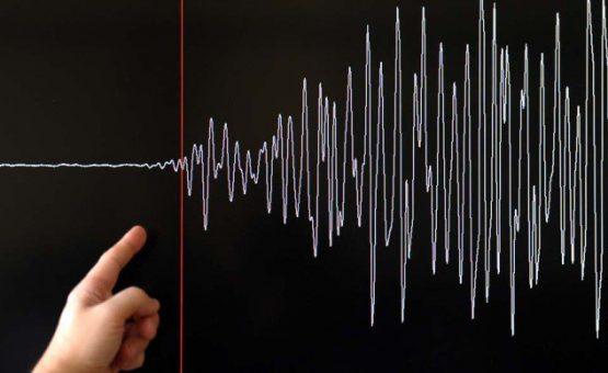 terremoto-grafico-555x340
